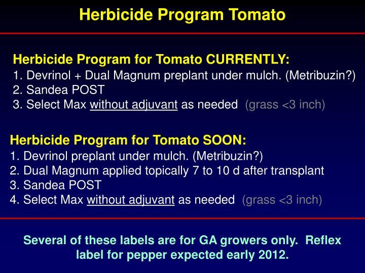 Herbicide Program Tomato