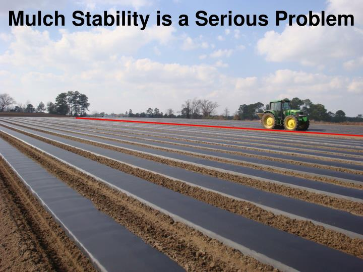 Mulch Stability is a Serious Problem