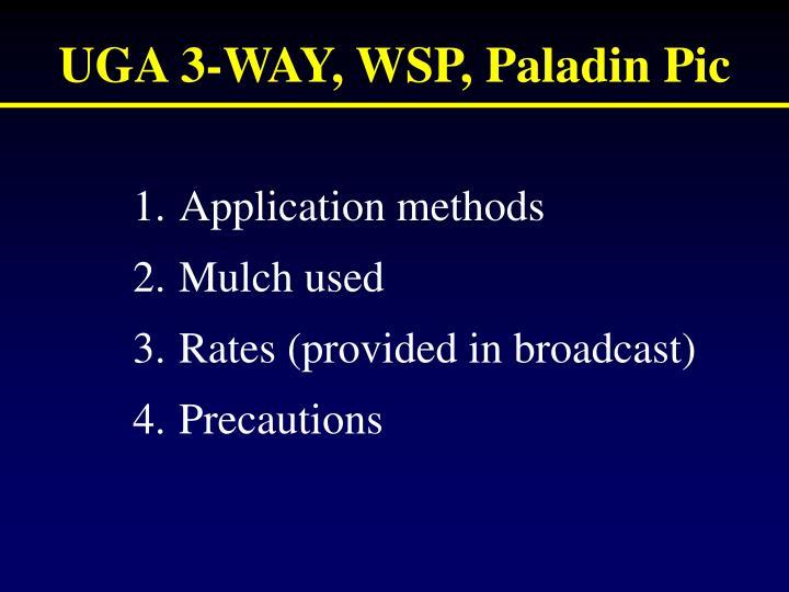UGA 3-WAY, WSP, Paladin Pic
