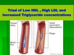 triad of low hdl high ldl and increased triglyceride concentrations
