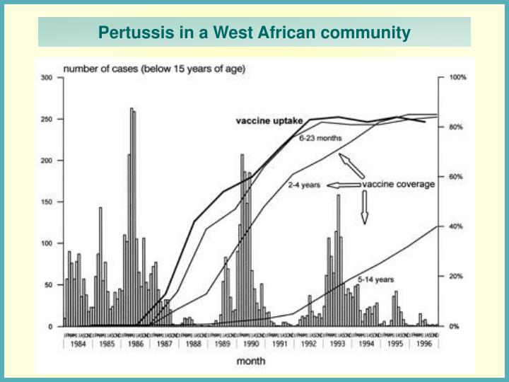 Pertussis in a West African community