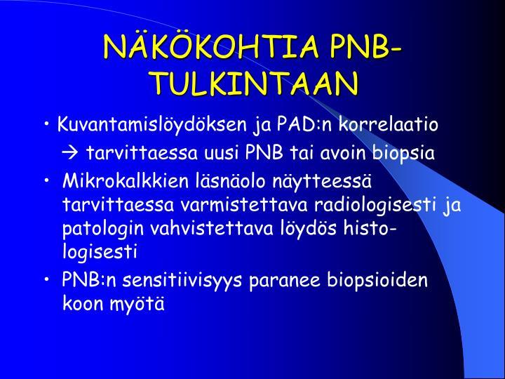 NÄKÖKOHTIA PNB-TULKINTAAN