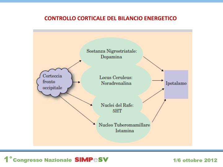 CONTROLLO CORTICALE DEL BILANCIO ENERGETICO
