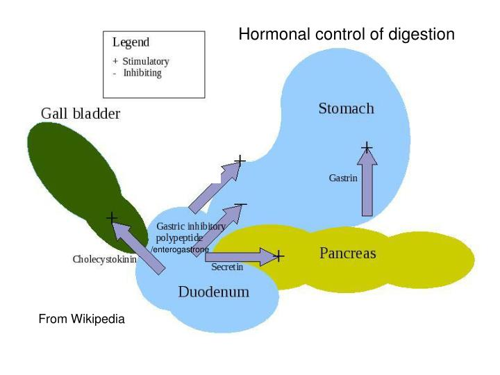 Hormonal control of digestion