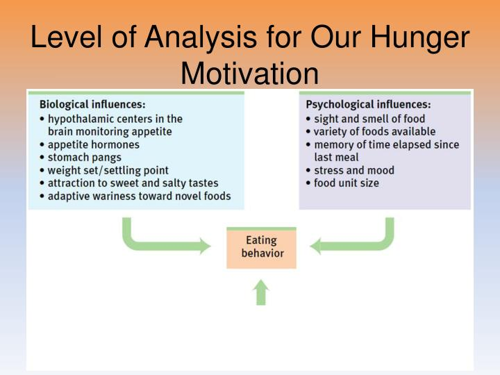 Level of Analysis for Our Hunger Motivation