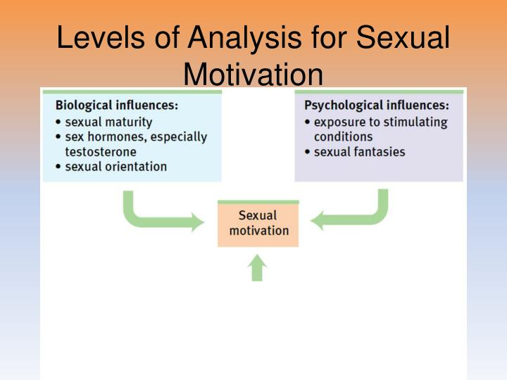 Levels of Analysis for Sexual Motivation