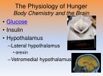the physiology of hunger body chemistry and the brain