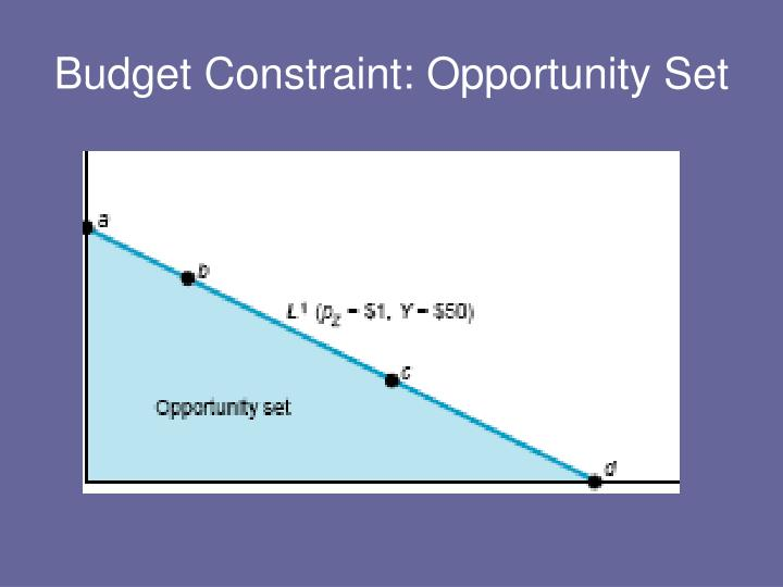 Budget Constraint: Opportunity Set