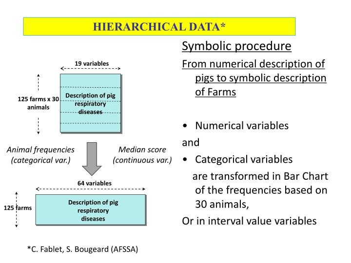 HIERARCHICAL DATA*