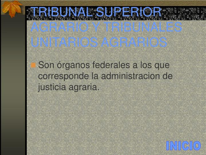 TRIBUNAL SUPERIOR AGRARIO Y TRIBUNALES UNITARIOS AGRARIOS