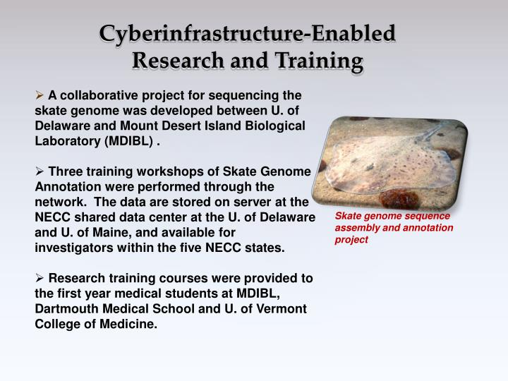Cyberinfrastructure-Enabled Research and Training