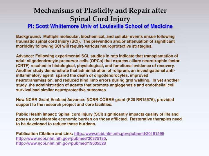 Mechanisms of Plasticity and Repair after Spinal Cord Injury