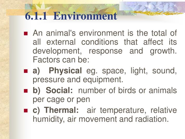 6.1.1  Environment