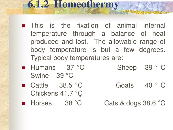 6.1.2  Homeothermy