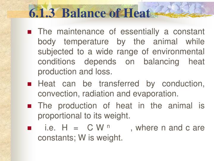 6.1.3  Balance of Heat