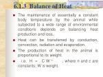 6 1 3 balance of heat