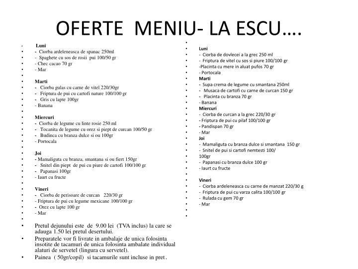 OFERTE  MENIU- LA ESCU….
