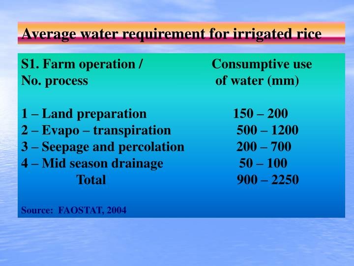 Average water requirement for irrigated rice