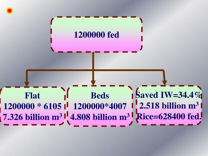 1200000 fed