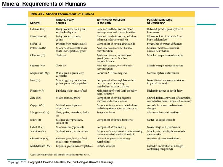 Mineral Requirements of Humans