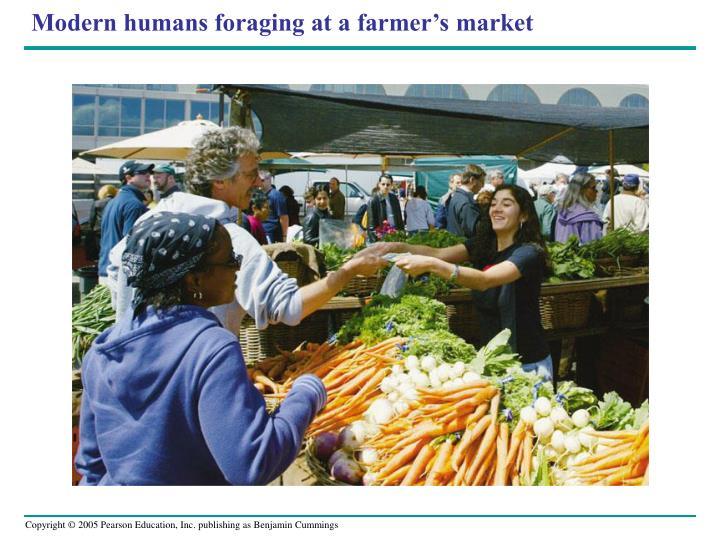 Modern humans foraging at a farmer's market