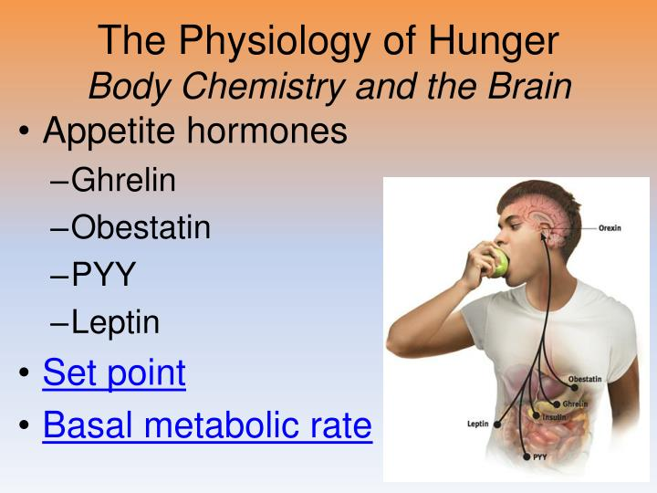 The Physiology of Hunger