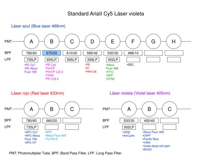 Láser azul (Blue laser 488nm)