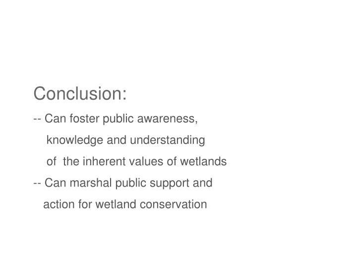 Conclusion: