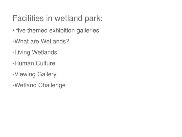 Facilities in wetland park: