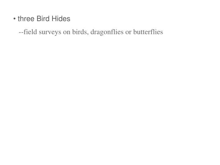 three Bird Hides