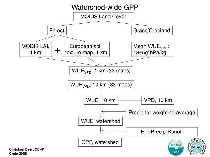 Watershed-wide GPP