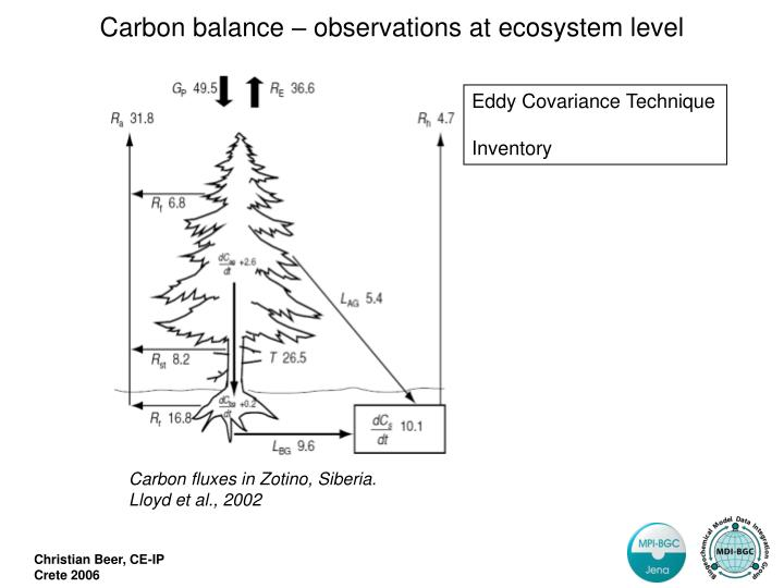 Carbon fluxes in Zotino, Siberia.