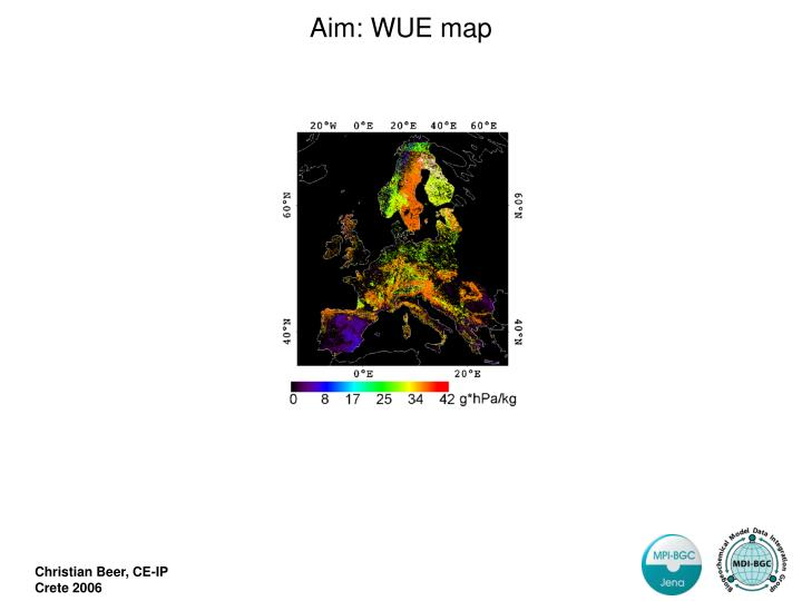 Aim: WUE map
