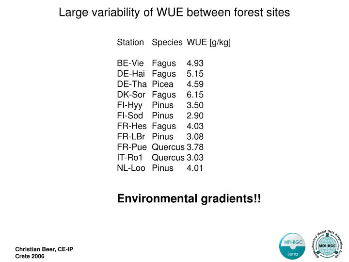 Large variability of WUE between forest sites