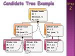 candidate tree example