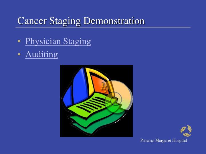 Cancer Staging Demonstration