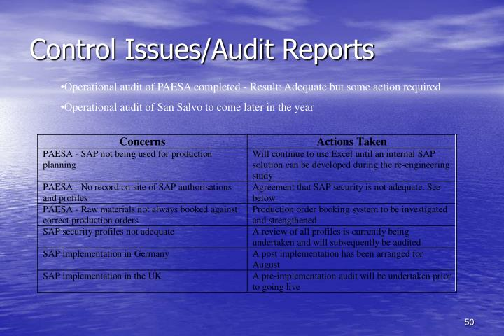 Control Issues/Audit Reports