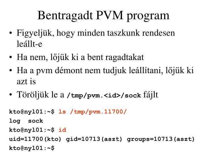 Bentragadt PVM program