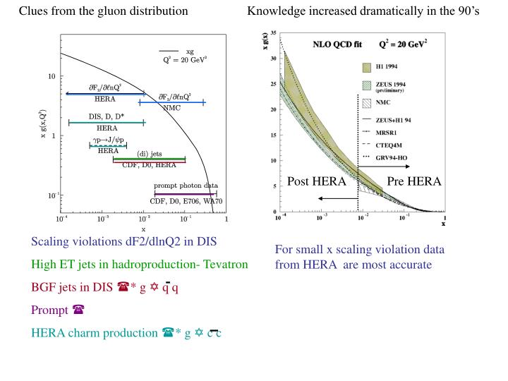 Clues from the gluon distribution