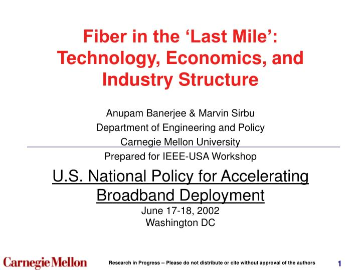 Fiber in the last mile technology economics and industry structure