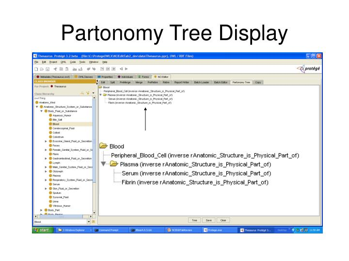 Partonomy Tree Display