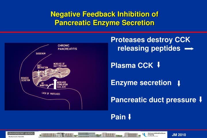 Negative Feedback Inhibition of