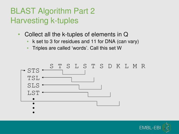 BLAST Algorithm Part 2