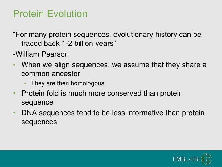 Protein Evolution