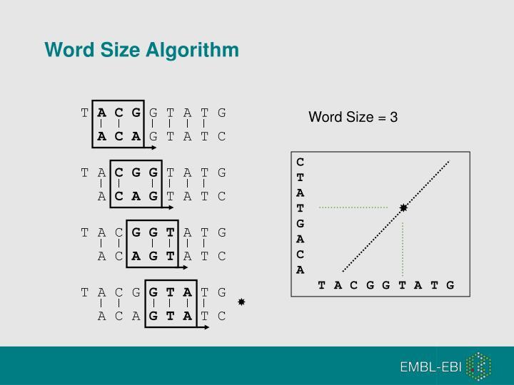 Word Size Algorithm