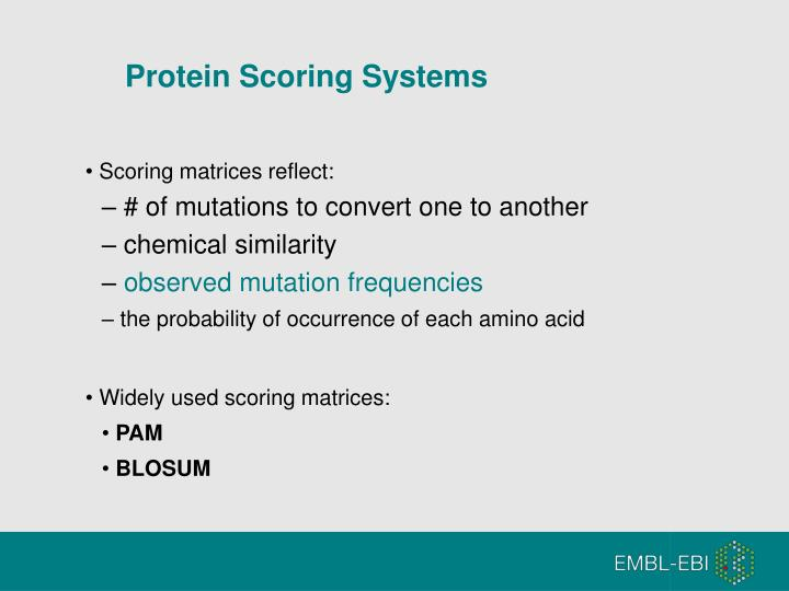 Protein Scoring Systems