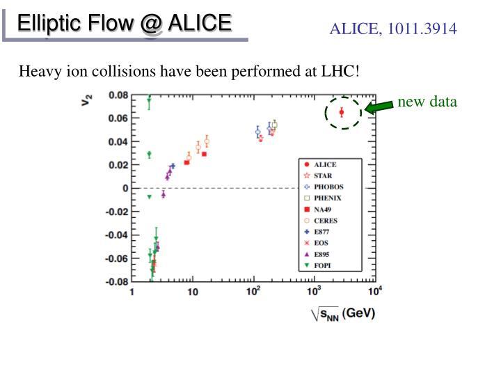 Elliptic Flow @ ALICE