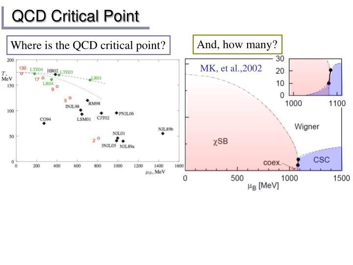 QCD Critical Point