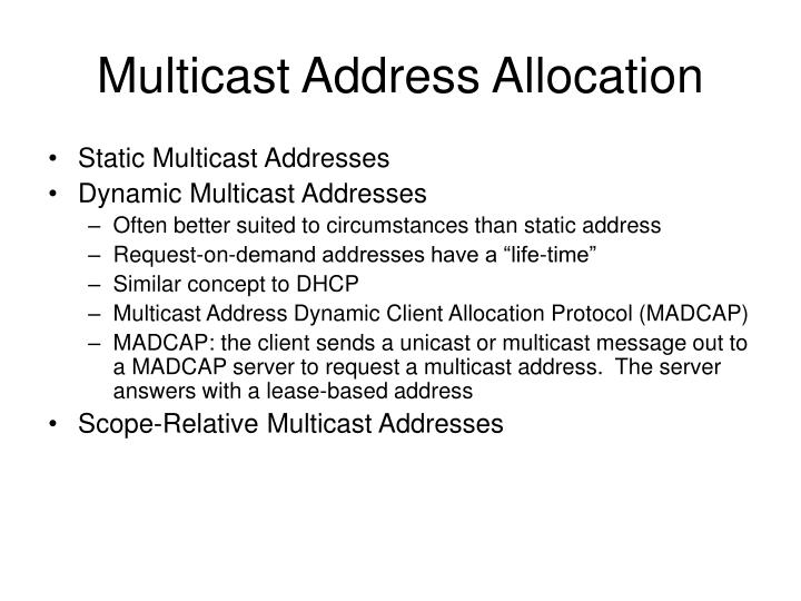 Multicast Address Allocation