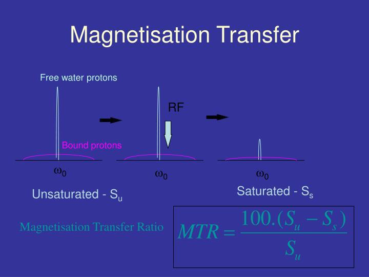 Magnetisation Transfer